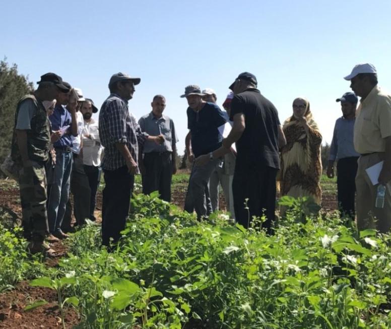 Des séances de formation dans les fermes pilotes à Benslimane
